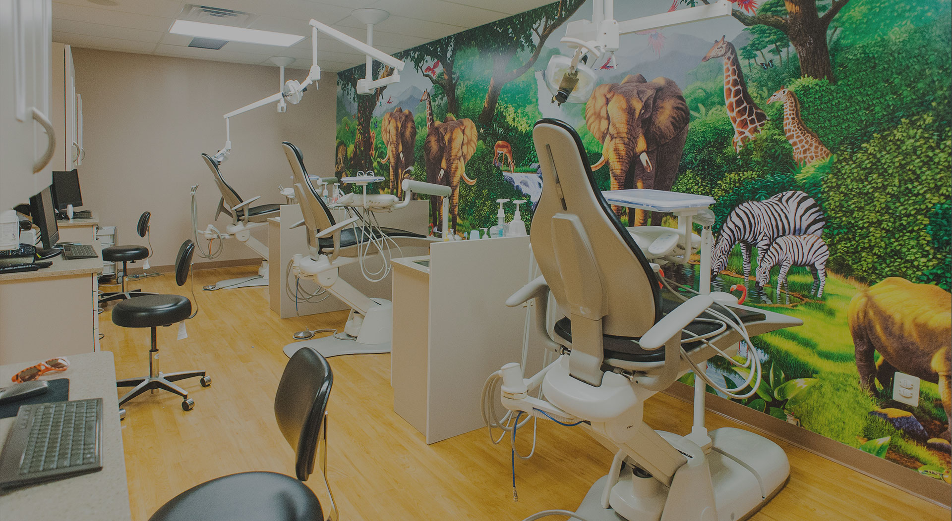 Open bay at Holdbrook Pediatric Dental